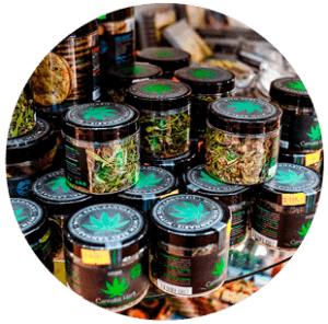 Green Goddess Cannabis Distributors Insurance Icon